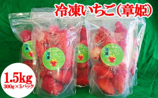 いつでも美味しい!松田農園の冷凍イチゴ「章姫」