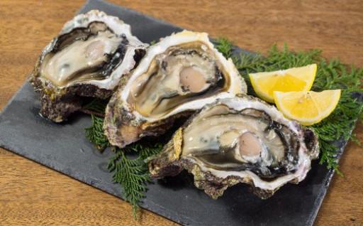海女採り 尾鷲産天然岩牡蠣(いわがき)受付開始!