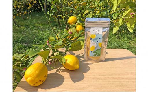 ☆新商品☆小豆島ドライレモン