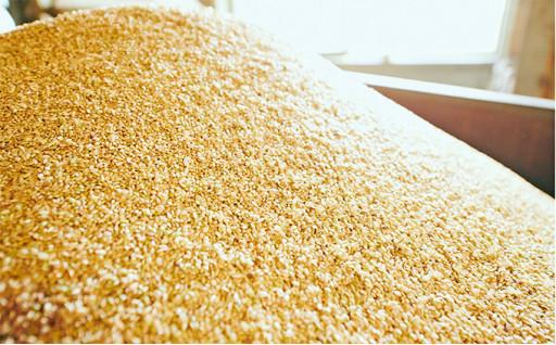 兵庫県産玄米3点セット (5kg×3袋)