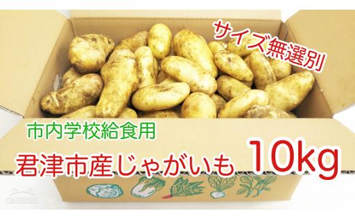 【給食野菜第2弾】 君津市産じゃがいも 10kg