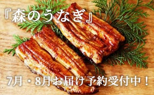 『森のうなぎ』7月・8月お届け予約受付中!