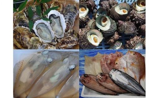 旬な魚介類をお届け!福津の魚介類6ヶ月定期便★