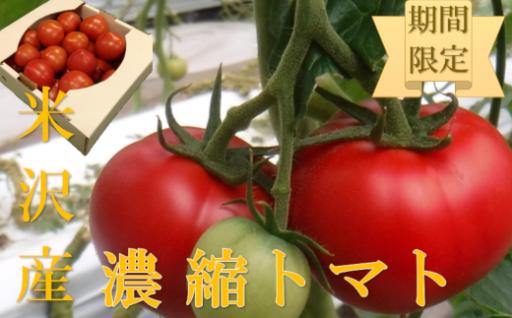 《数量20個限定》濃縮トマト_1.5kg