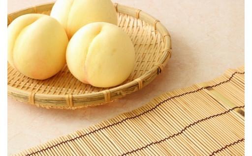 毎年大人気の清水白桃!まだ在庫ございます!