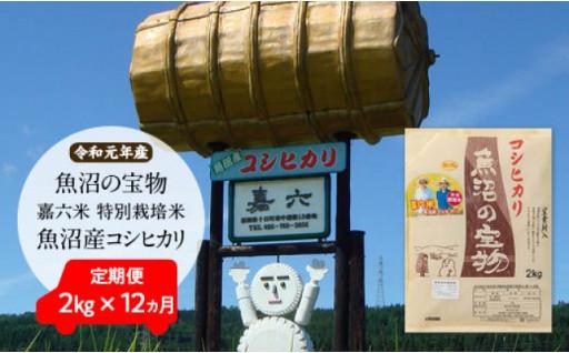 「魚沼の宝物」嘉六米特別栽培米魚沼産コシヒカリ