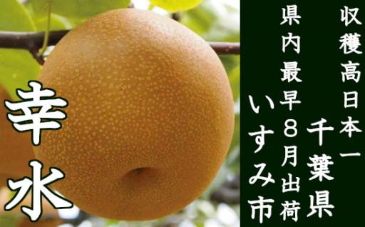 梨収穫高日本一千葉県!いすみ産は8月に楽しめる♪