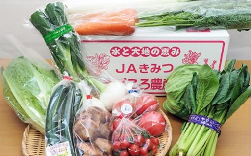 JA直売所の野菜ボックスが受付再開しました