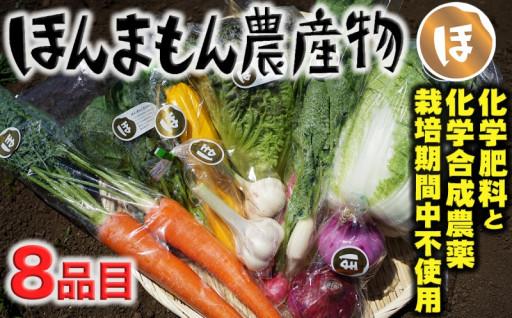 化学合成農薬等不使用!旬の野菜が楽しめるセット