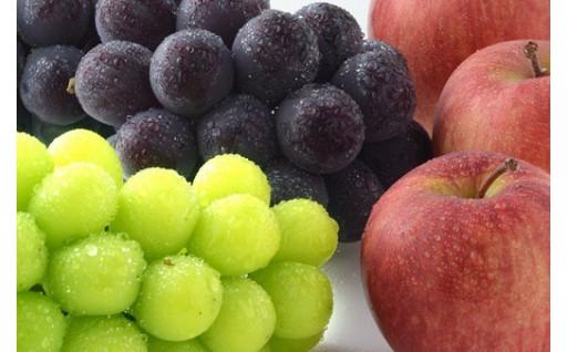 須坂市の美味しいフルーツをお見逃しなく!