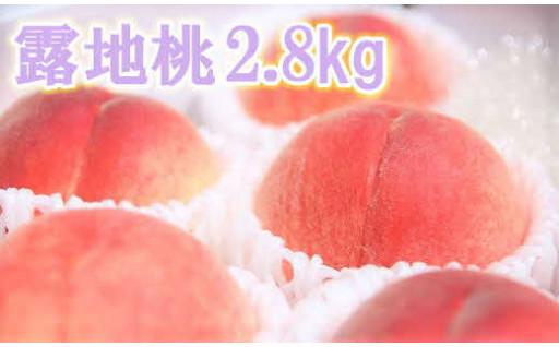 【大切な方のおもてなしに】露地桃 2.8kg