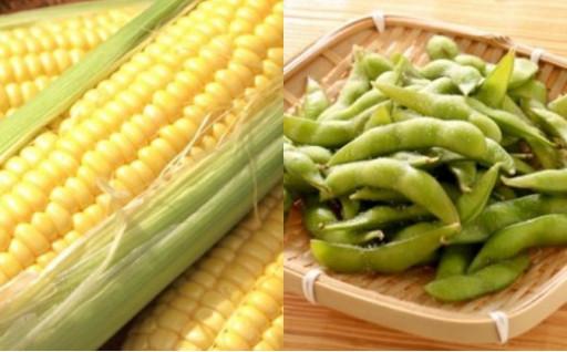 『トウモロコシと枝豆のセット』15セット限定予約