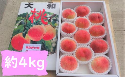 【桜井市産】あかつき または 清水白桃 約4kg