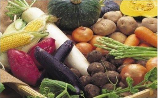 【季節の野菜をお届け】特選しばもんセット