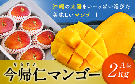 今帰仁マンゴーA級品2kg【7月~8月頃発送】