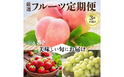 ☆三豊市産【人気の厳選フルーツ】定期便!☆