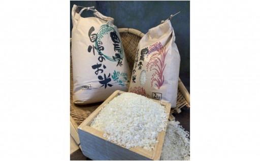 当事業所コヘレト農園産のお米
