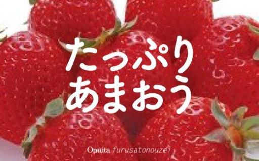 福岡県産あまおう(大粒285g×4パック)