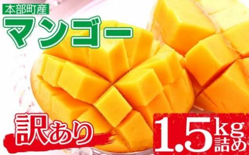 訳あり【2020年夏発送】マンゴー1.5kg詰め