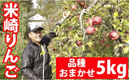 《予約開始》米崎りんご品種おまかせ5㎏詰め合わせ