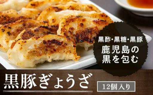 かごしま黒豚餃子セット(12個入×10パック)