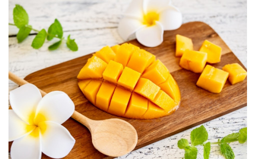 残りわずか!夏のマンゴー特集