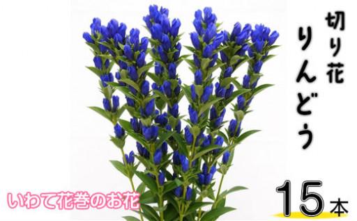 鮮やかな青が美しい。いわて花巻のお花【りんどう】