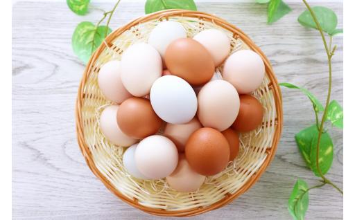 【山梨県産】ミシュランも選ぶ高級卵セット 30個