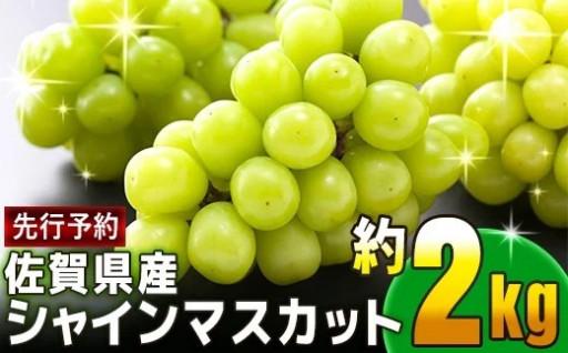 【先行予約】佐賀県産シャインマスカット 約2kg