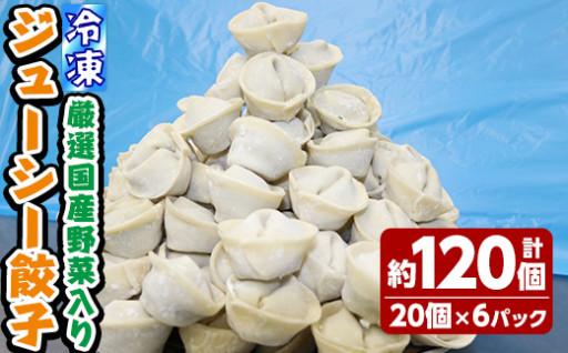 プロ厳選!国産野菜のジューシー餃子3㎏!120個