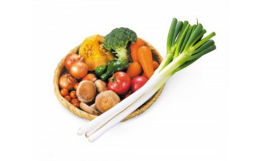 遠野の野菜ソムリエが厳選する新鮮野菜の定期便です