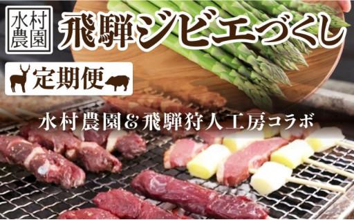飛騨ジビエ 4回定期便 ジビエと野菜セット