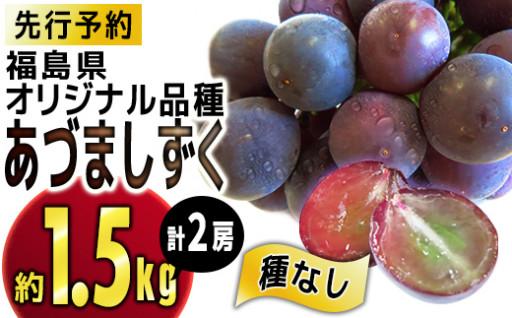 【先行予約】福島県オリジナル品種『あづましずく』