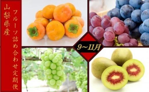 山梨産フルーツ詰め合わせ定期便(9~11月)