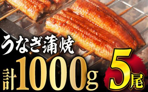 うなぎ蒲焼1kg(5尾)土用丑の日迄にお届け可!