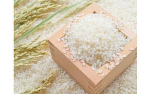 将棋界の若き天才藤井聡太七段も食べた長沼のお米!