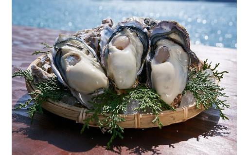 【備前市日生産】自慢の牡蠣 受付開始《数量限定》