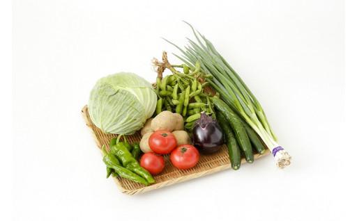 京都伏見直送!新鮮で美味しい「京の旬野菜」です!