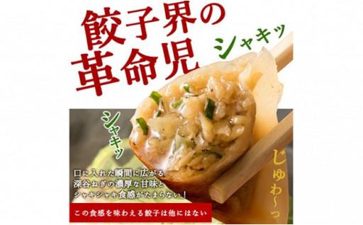 深谷名物「ねぎ餃子」54個(18個×3パック)