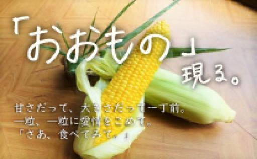 北海道産「おおもの」現る。