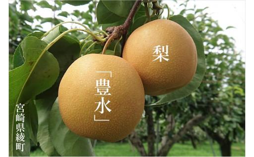 秋初めには和梨「豊水」