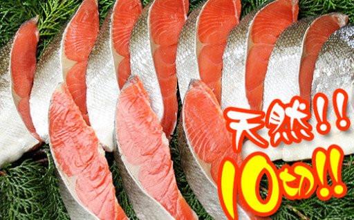 銀鮭と紅鮭あなたはどっち派?