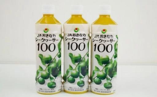 【シークヮーサー】PETボトル(500ml)3本