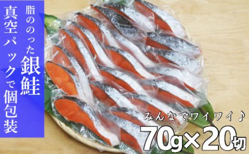 【ご要望から誕生!】鮭20切れ真空パック