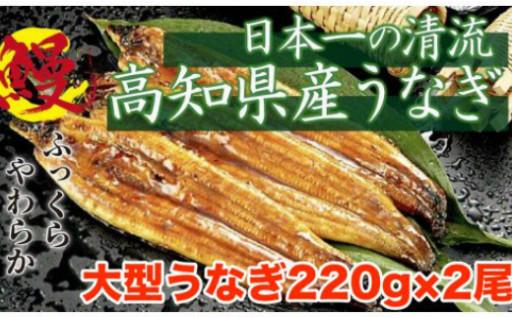 ニコニコエール品☆うなぎ蒲焼き(´ρ`)