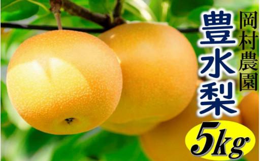 くにさき岡村農園の豊水梨5kg
