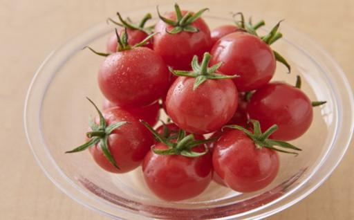 【10月中旬以降出荷】幻のトマト「プチルージュ」