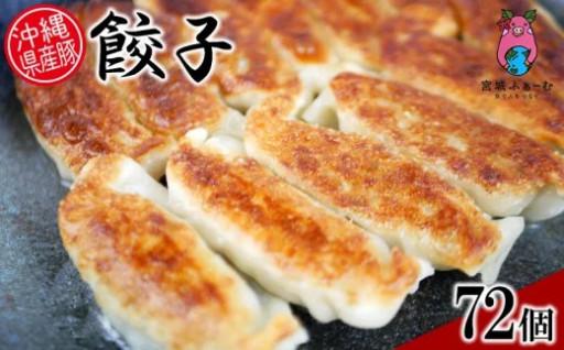 沖縄県産豚使用 餃子72個