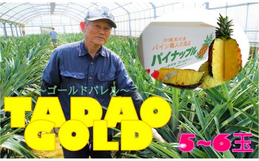 受付終了間近!【TADAO GOLD】4~6玉