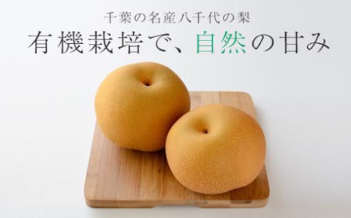 完全有機栽培にこだわって作った「豊水梨」2kg